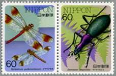 昆虫シリーズミヤマアカネ・マイマイカブリ