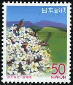 2004年国土緑化