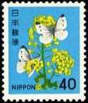 新動植物V・菜の花40円
