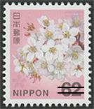 ソメイヨシノ62円