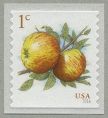 リンゴ・コイル