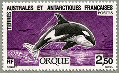 仏領南方南極地方1993年シャチ