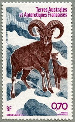 仏領南方南極地方1985年コルシカ山羊