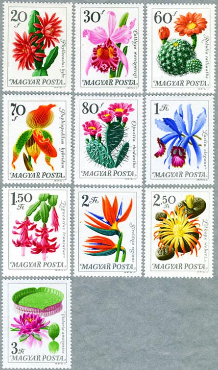 1965年植物園の花10種