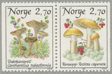 1987年きのこ2種