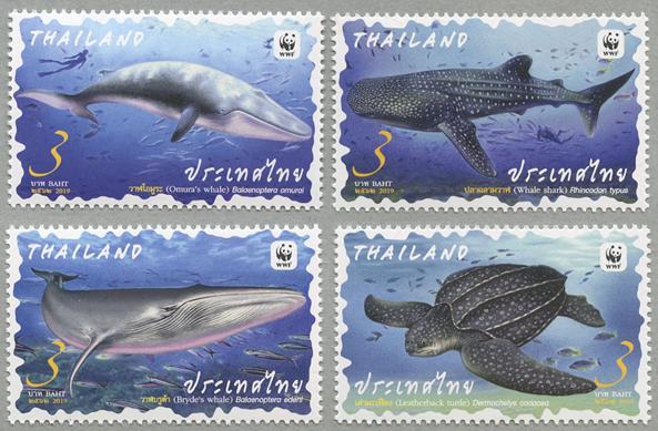 海洋生物4種