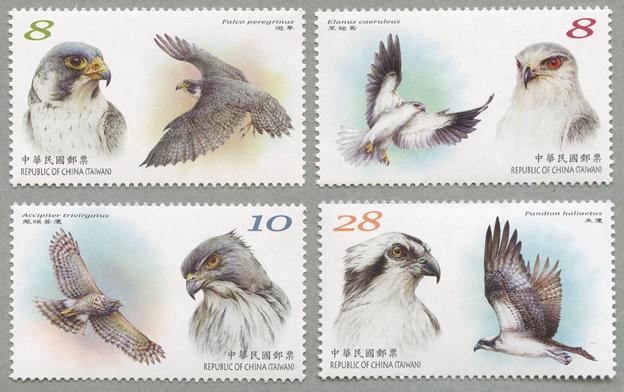 鳥類保護4種