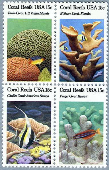 アメリカ1980年サンゴ礁田型